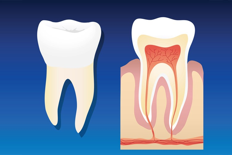 Root Canal Treatment Aftercare Tips